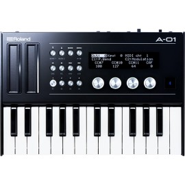 Roland Boutique A-01 K Bundle